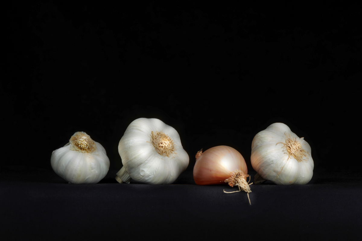 Garlic_BLACKBG