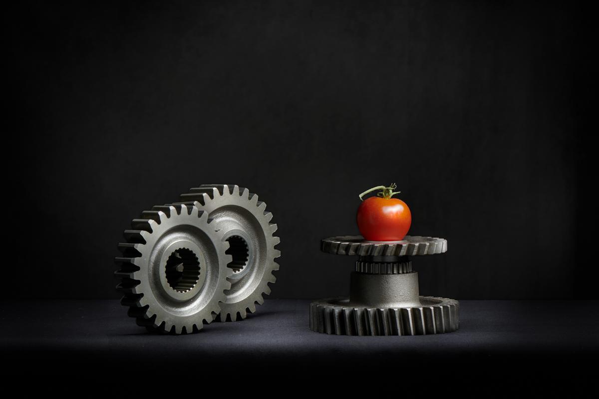 Gears_tomato_Jan_21